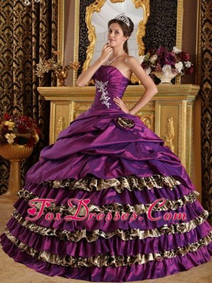 Purple One Shoulder 2013 Leopard Applique Quinceanera Dress