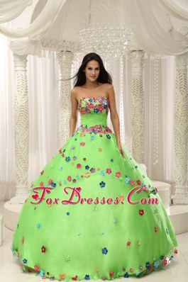 Floral Appliques Spring Green Quninceaera Dress 2013