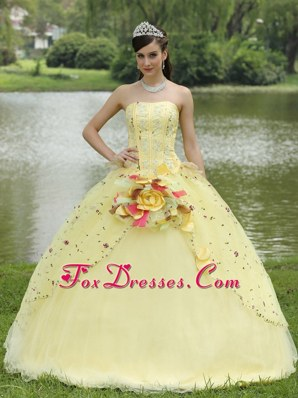 Appliques Embroidery Light Yellow Floral Quinceanera Dress