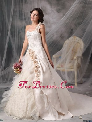 Bridal Dress 2013 Champagne One Shoulder Chapel Flowers