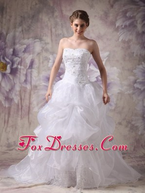 Strapless Wedding Dress for 2013 Chapel Organza Appliques