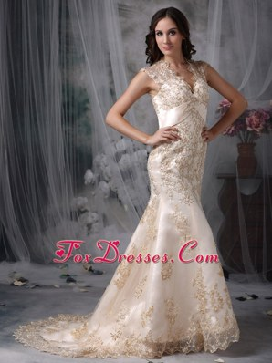 Champagne Mermaid V-neck Embroidery Bridal Dress in 2013