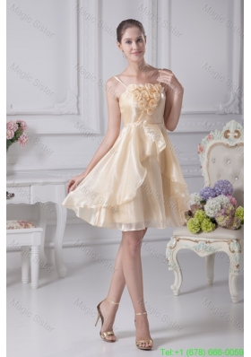 Spaghetti Straps A Line Organza Prom Dresseswith Handle Flowers