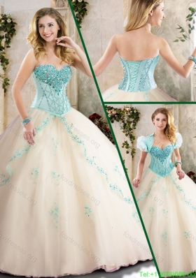 Fall Fashionable Champagne Quinceanera Gowns with Appliques