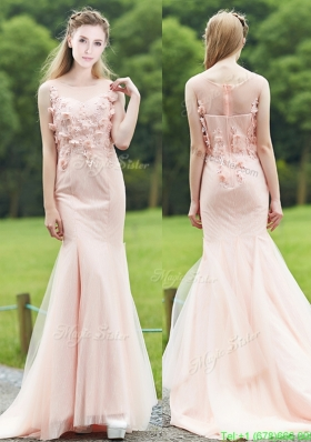 Luxurious See Through Light Pink Mermaid Mother Dress with Brush Train