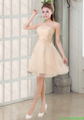 2015 Champagne A Line Strapless Appliques Bridesmaid Dress
