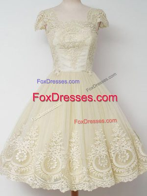 Custom Designed Tulle Cap Sleeves Knee Length Court Dresses for Sweet 16 and Lace