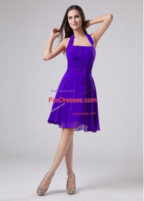 Perfect Sleeveless Ruching Zipper Mother of the Bride Dress