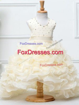 Champagne Sleeveless Organza Zipper Little Girls Pageant Gowns for Wedding Party