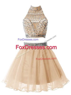 Modern Champagne Sleeveless Knee Length Beading Zipper Dama Dress