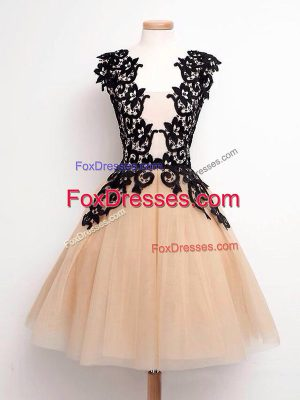 Best Champagne Lace Up Bridesmaid Dresses Lace Sleeveless Knee Length