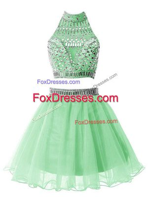High End Apple Green Sleeveless Organza Zipper Bridesmaid Gown for Prom and Party and Sweet 16