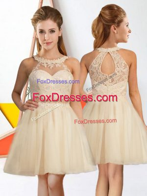 Knee Length A-line Sleeveless Champagne Dama Dress for Quinceanera Zipper