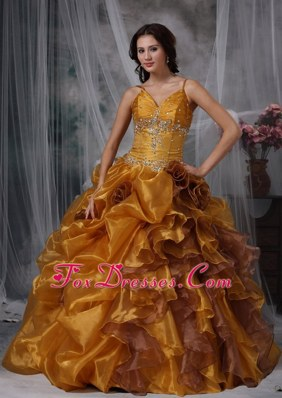 Brown Organza Quinceanera Dress Beadwork with Straps
