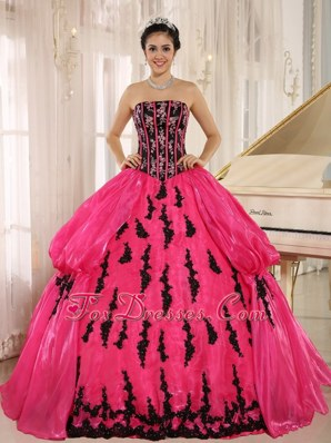 Hot Pink Strapkess Embroidery Quinceanera Dress 2013