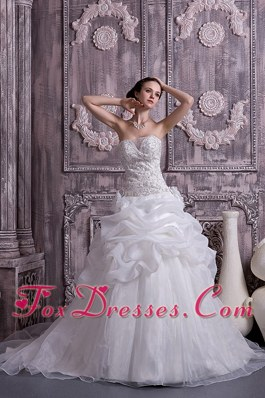 Exquisite Princess Organza Beading and Pick-ups Dress For Wedding