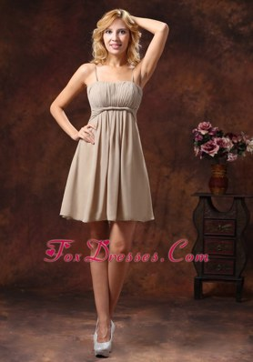Grey Spaghetti Straps Ruched Bridesmaid Dress for Wedding Party