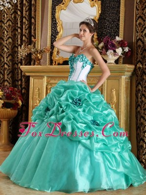 Apple Green Sweetheart Quinceanera Dress with Floral