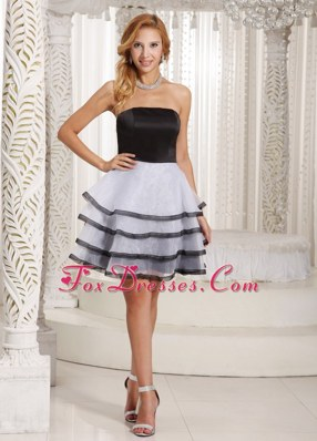 Ruffled Layers A-line Dama Dresse Black and White Summer