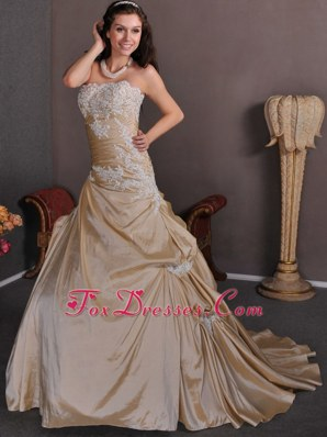 Elegant Champagne Appliques Wedding Dress 2013 Train Taffeta