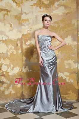 Grey Strapless Court Beading Evening Celebrity Dress for 2013