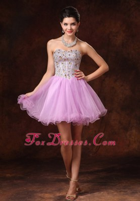 Lavender Beading Short A-line Prom Homecoming Gowns For 2013