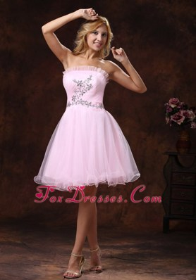 Strapless Baby Pink Custom Made For 2013 Prom Dress Short