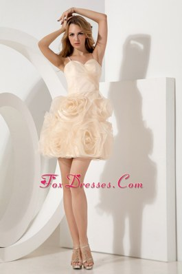 Short Champagne A-line Straps 2013 Homecoming Cocktail Dresses