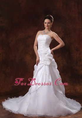 2013 Appliques Wedding Dress Chapel Train Taffeta Organza