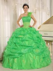 Spring Green Quinceaners Dress with pick-ups Embroidery