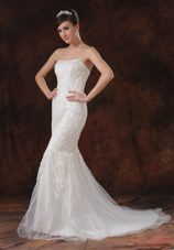 Mermaid Trumpet Bridal Wedding Dress Lace Brush Sweep Tulle