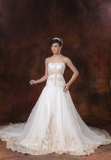 2013 Chapel Train A-line Straps Wedding Dress with Apliques