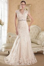 V-neck Lace Beading Champagne Mermaid Wedding Dress 2013