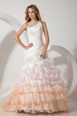 Colorful One Shoulder 2013 Bridal Gowns Layers Beading