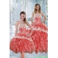 2015 Classic Strapless Appliques and Ruffles Quinceanera Dresses in Watermelon