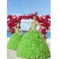 2015 Unique Green Princesita With Quinceanera Dress with Beading and Ruffles