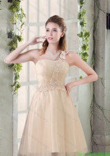 2015 Popular A Line Appliques Bridesmaid Dress with One Shoulder