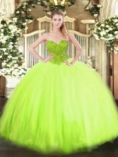 Cute Sweetheart Sleeveless Lace Up Quinceanera Dresses Organza and Tulle
