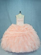 Sophisticated Organza Sleeveless 15th Birthday Dress and Beading