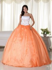 Organza Strapless 2013 Quinceanera Dress in Orange