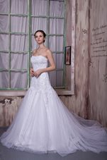 Magnificent A-line Strapless Court Train Appliques Bridal Gown