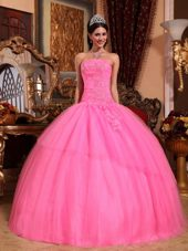Designer Rose Pink Strapless Beading Quinceanera Dress