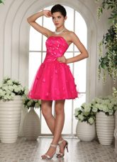 Perfect Appliques and Beading Strapless Prom Dress In Hot Pink