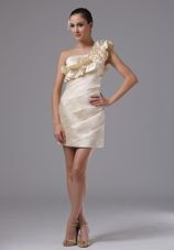 Hand Made Flowers Prom Holiday Dress Champagne One Shoulder