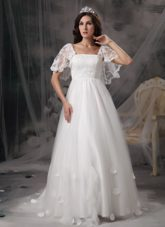 Empire Square Court Wedding Dress Train Tulle Lace