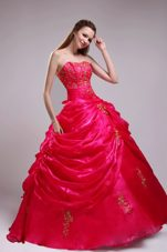 Red Quinceanera Dress for 2013 Spring Strapless Orangza Applqiues