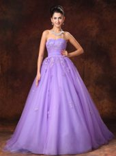 Lilac Tulle Appliques Court Train Wedding Dresses 2013