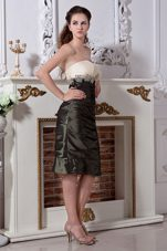 Olive Green Strapless Knee Length Mother Of The Bride Dress
