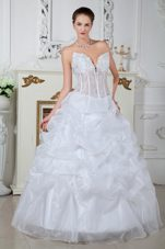 Ball Gown Sweetheart Embroidery Wedding Dress Popular