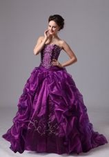 Sweep Train For Eggplant Purple Embroidery Quinceanera Dress Pick-ups